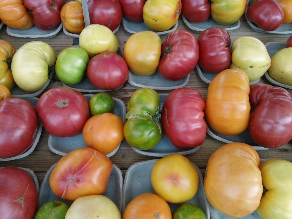 Tomatoes at the farmer's market.